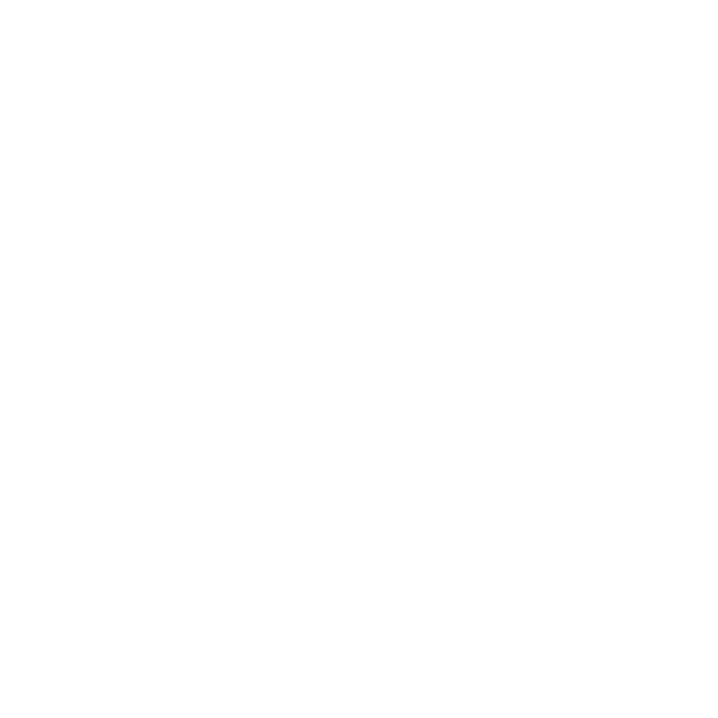 Prowess Logo